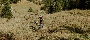 Mountainbike & Velo